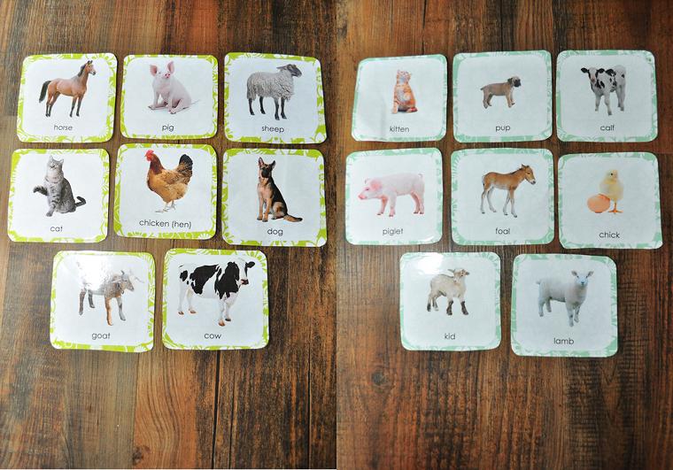 entretenimiento-para-ninos-cumpleanos-tarjetas-animales