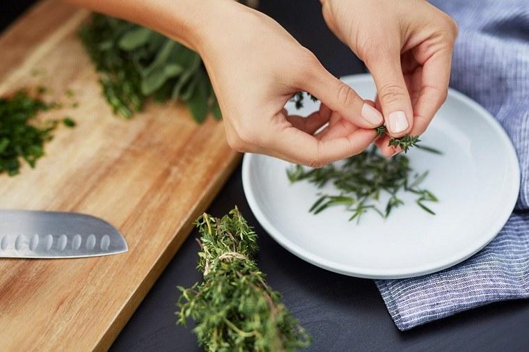 hierbas medicinales-consejos-salud