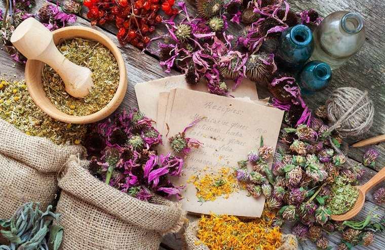 hierbas medicinales-ideas-consejos-salud