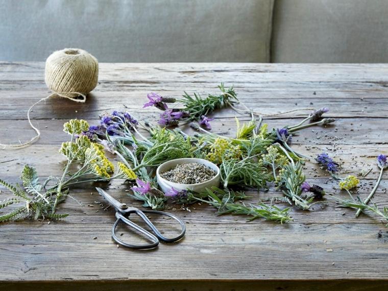 lavanda-planta-hierba-seca-ideas