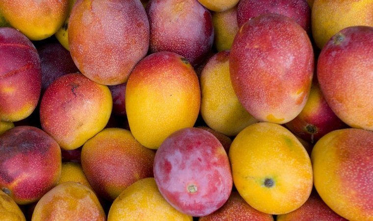 beneficios ingerir mango