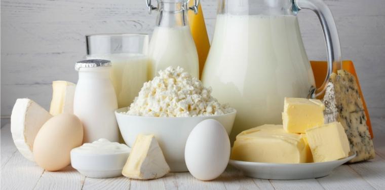 piramide nutricional-productos-lacteos