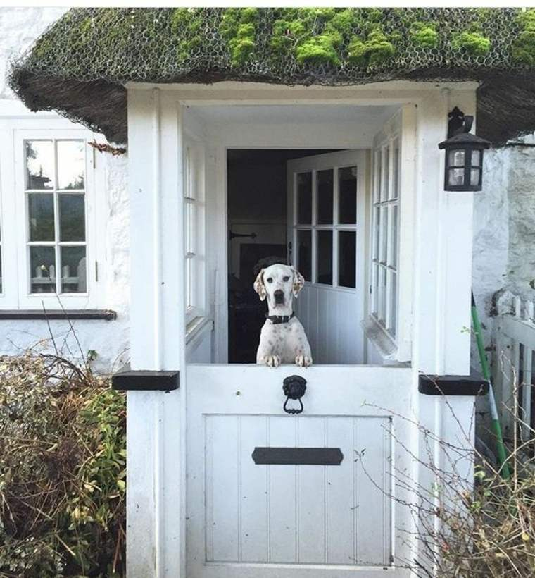 puerta holandesa blanca