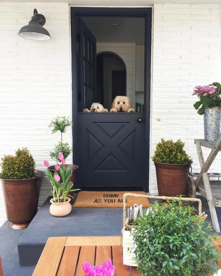 puerta holandesa