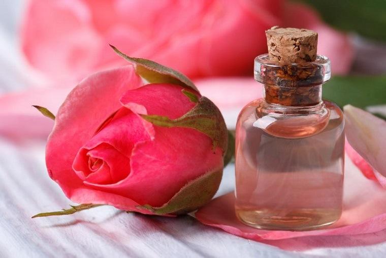 remedios-para-quemaduras-solares-arbol-de-sandalo-rosa