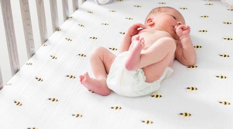 revelar-mitos-bebe-opciones