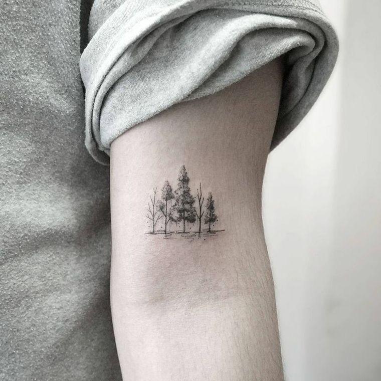 Bosque o árboles