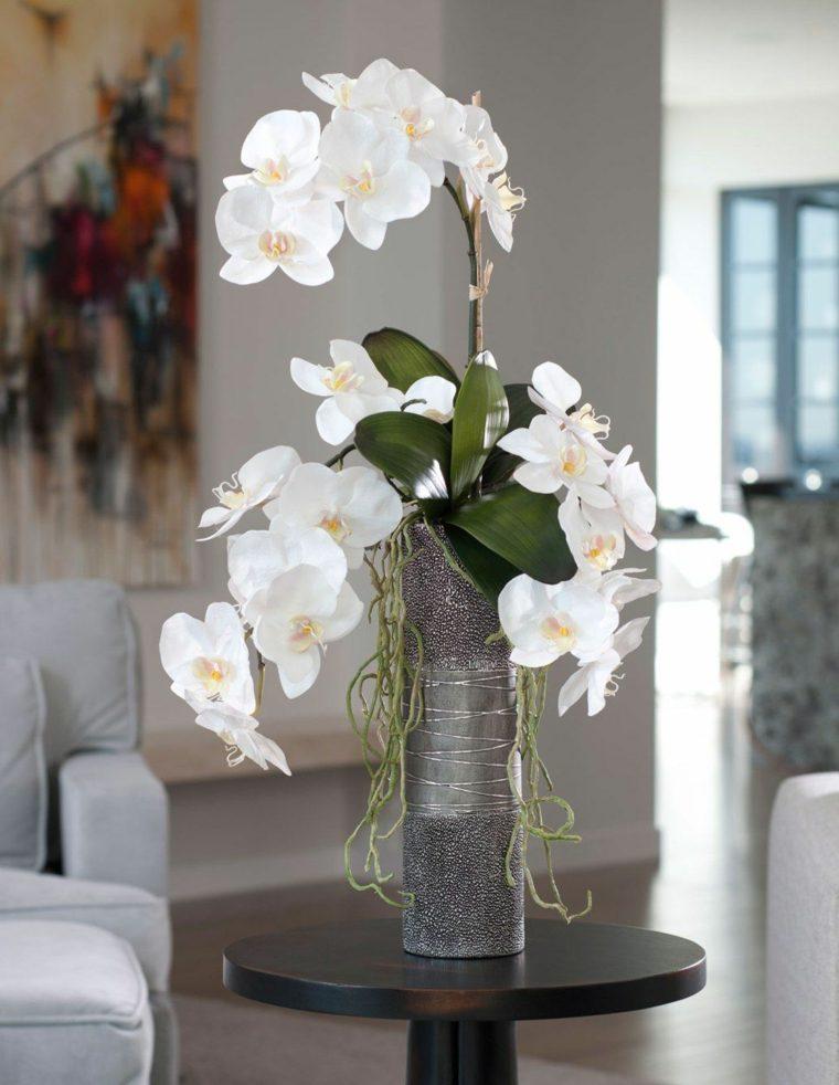 como-cuidar-una-orquidea-flor-blanca