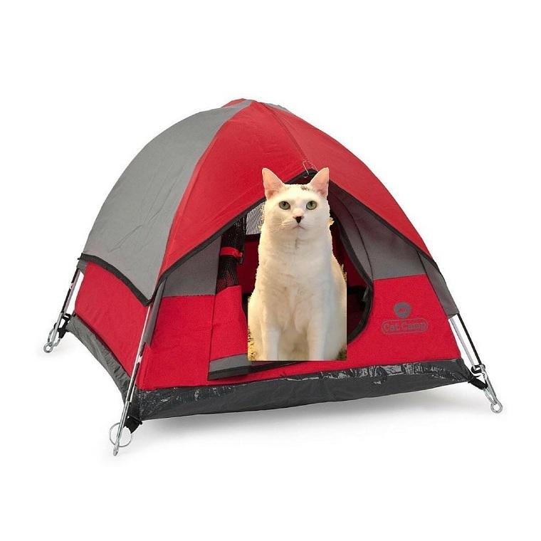 cosas-de-gatos-tienda-campana-mini-rojo