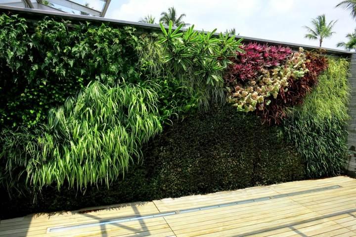 estilo-muro-diferentes-plantas
