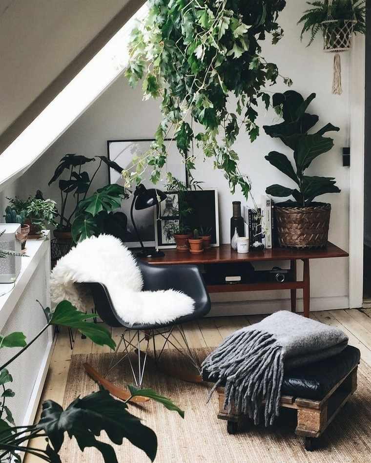 flores hermosas-interior-casa-oficina