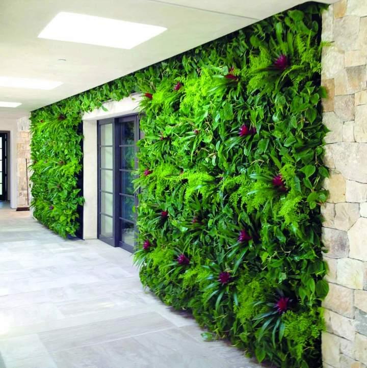 flores-paredes-verdes-muro