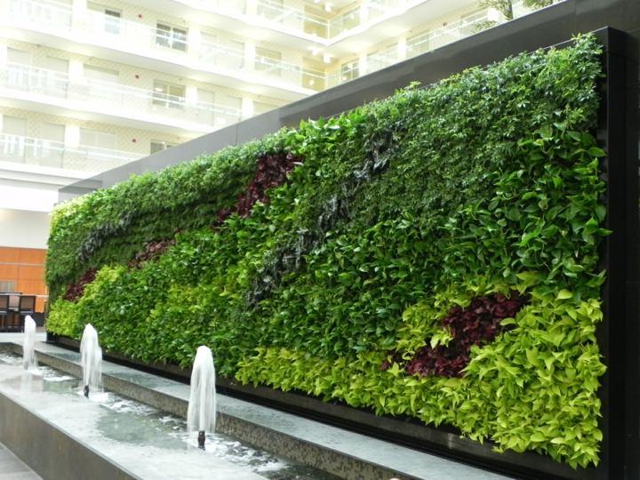 ideas-exteriores-muros-verdes