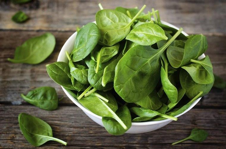 maternidad-lactancia-comidas-vegetales-hoja-verde