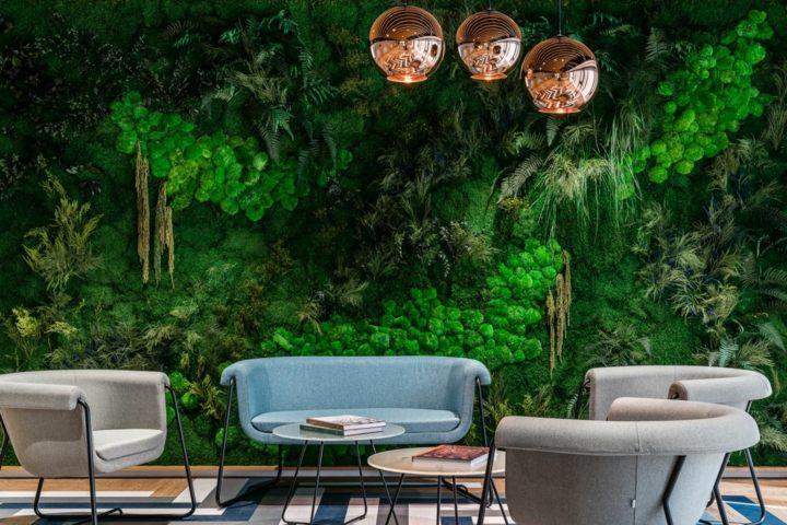 muro verde alfombra intimo