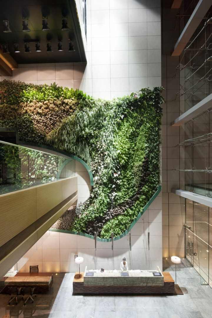 muro verde imagenes estilos