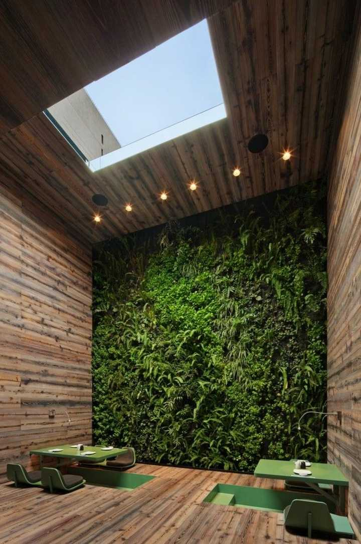 muro verde suelo madera