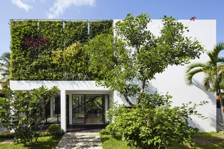 pared-exterior-muro-verde