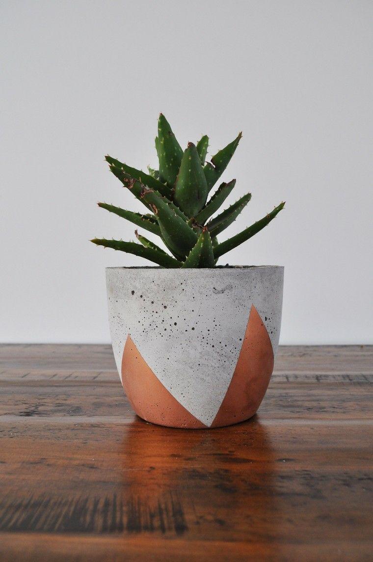 plantas-bellas-interio-opciones-macetas