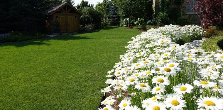 diseñar jardines