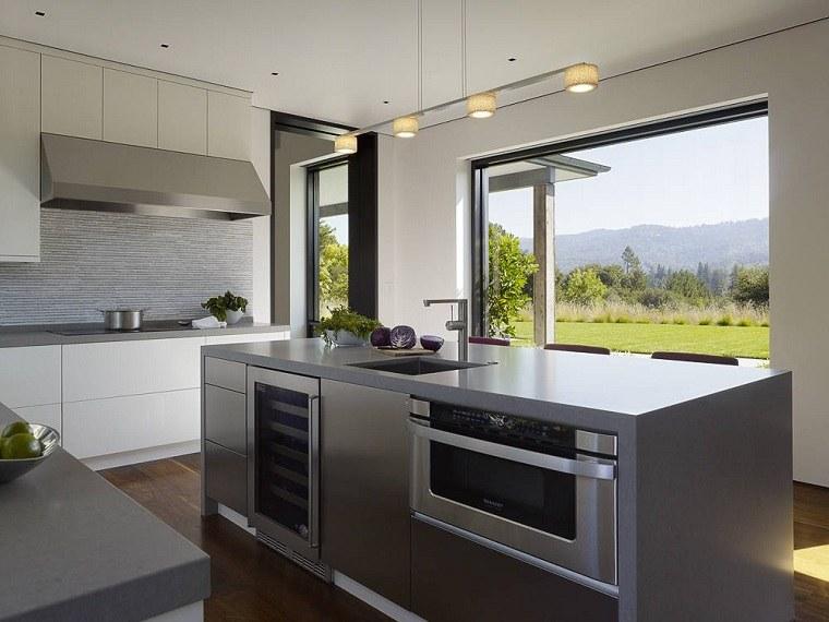 cocinas modernas con isla-diseno-walker-warner-architects