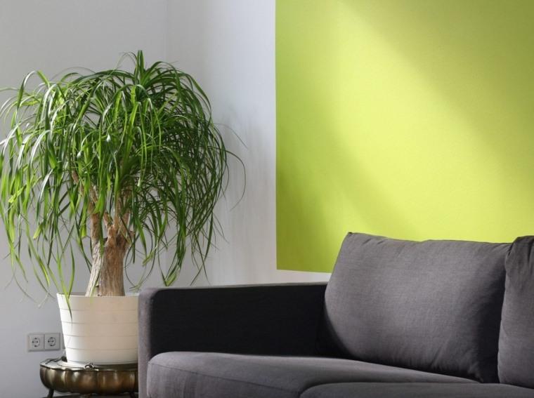 decoracion de interiores-paredes-verdes