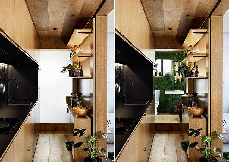 plantas-decorativas-espacio-moderno