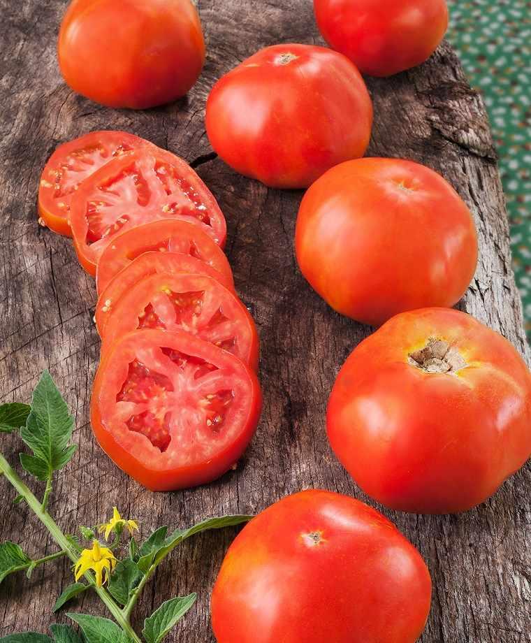 tomates-para-recetas-cocina