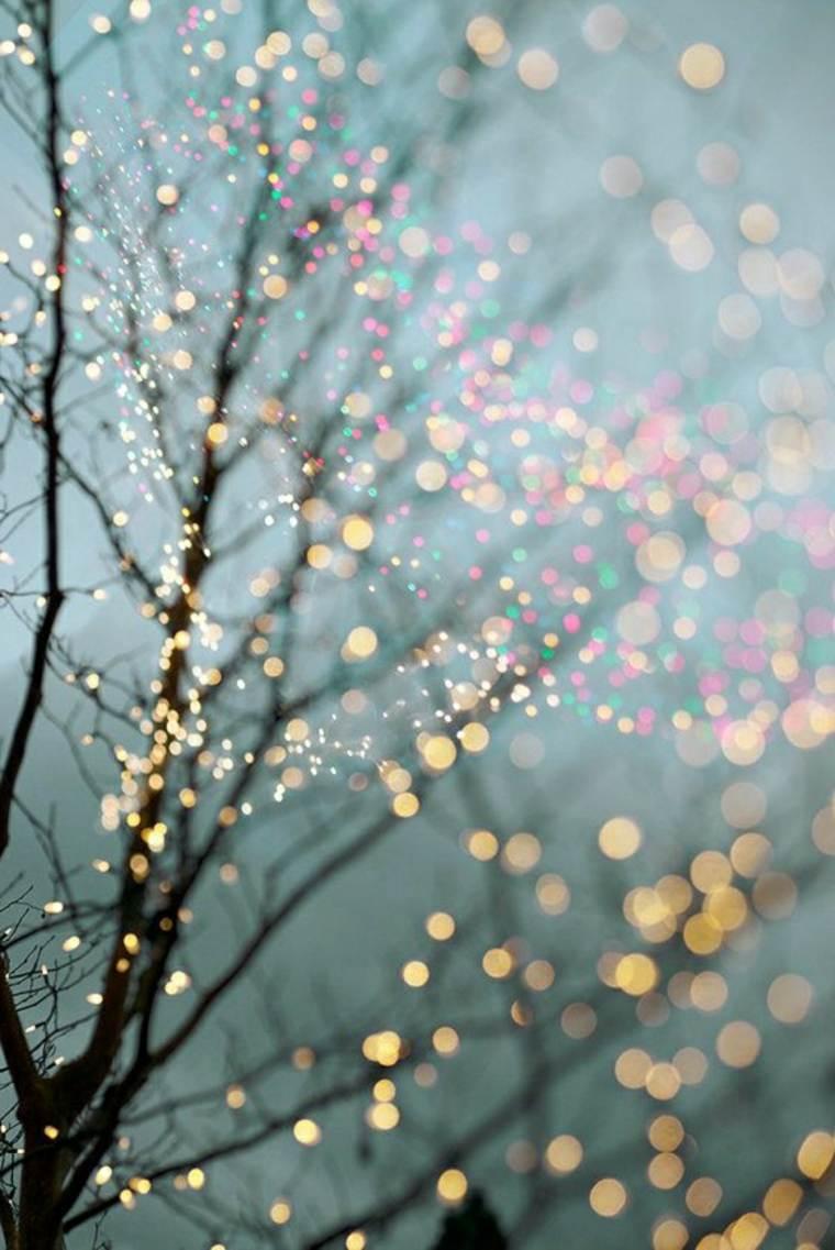 brillos-de-invierno