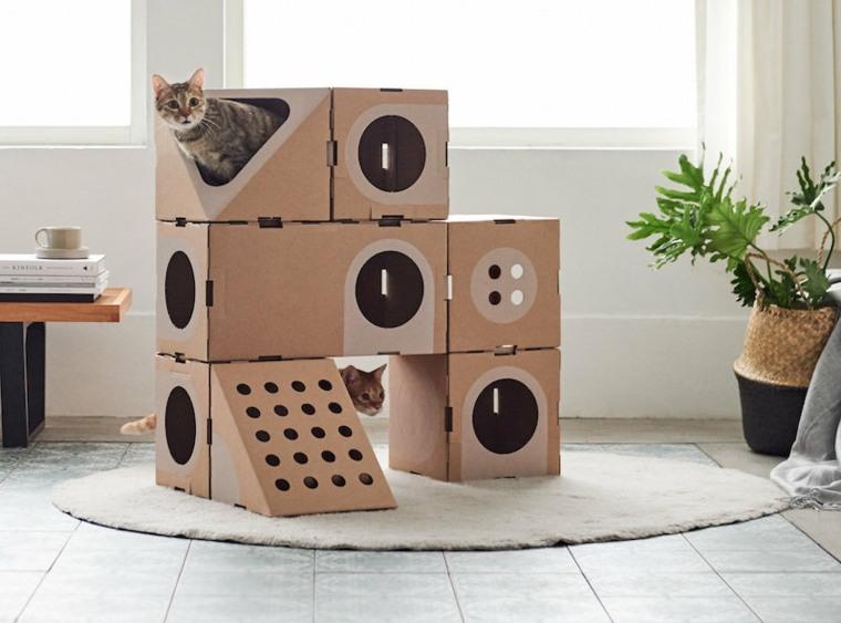 Juegos Para Gatos Caseros Que Necesitan Mas Y Mas Entretenimiento