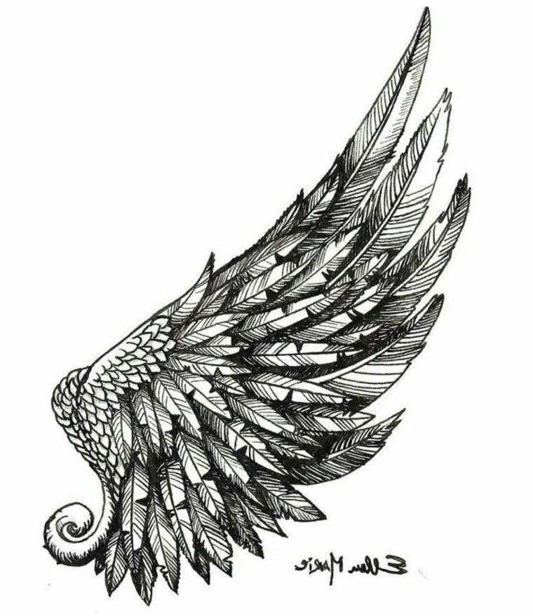 imágenes en blanco y negro ala