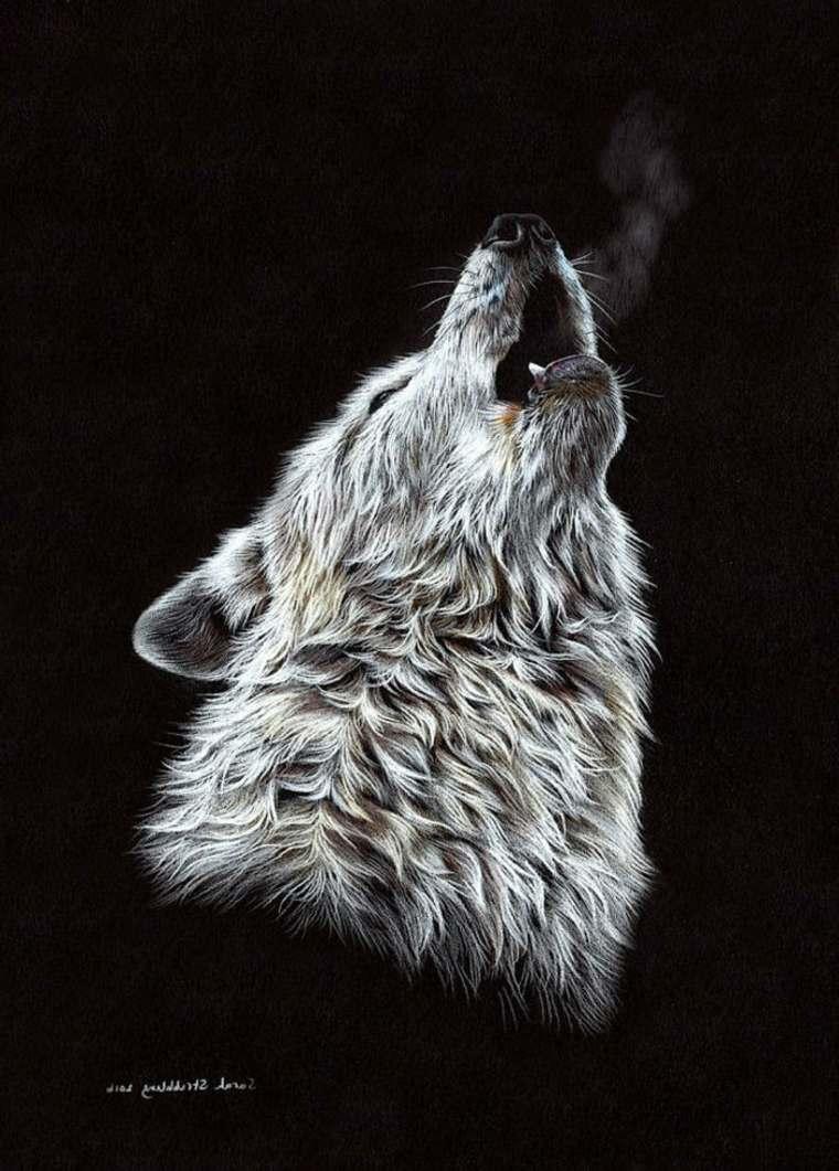 lobo-con-fondo-negro