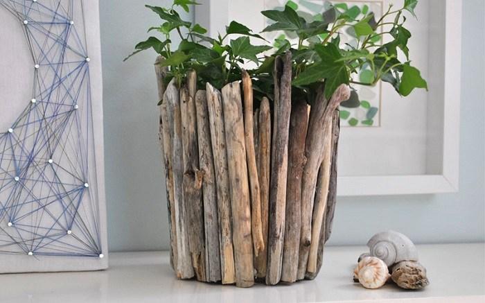madera a la deriva macetas plantas