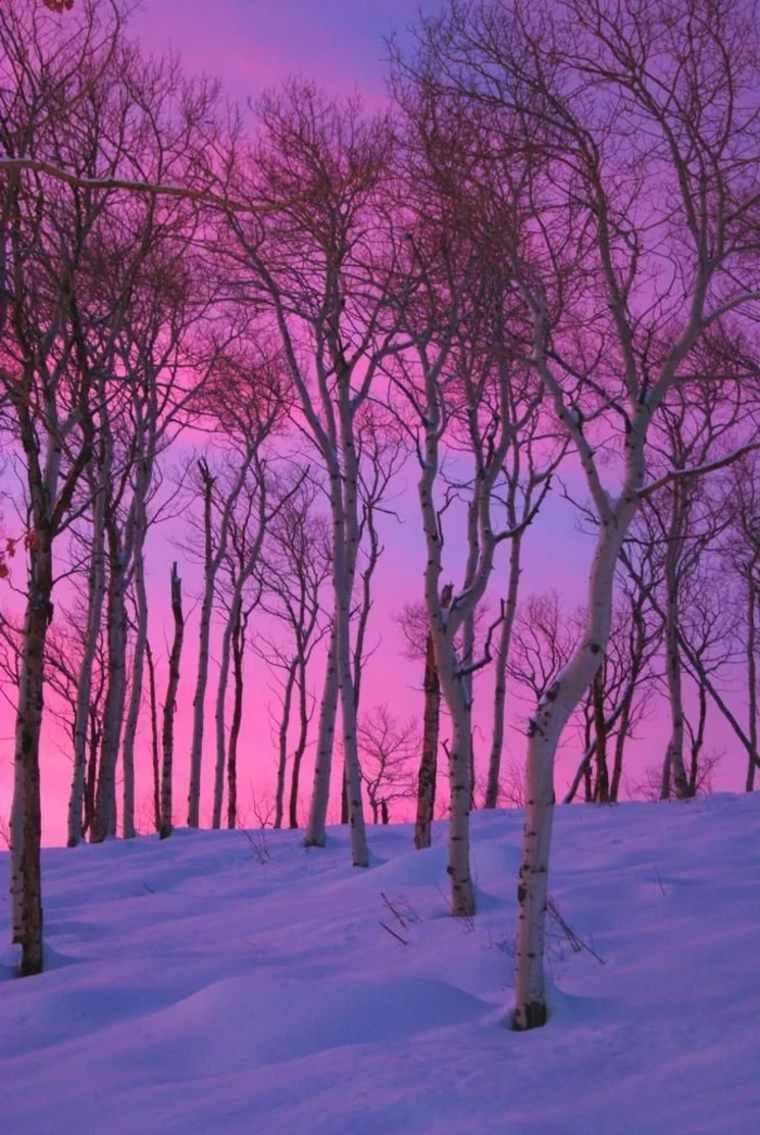 paisajes hermosos anochecer