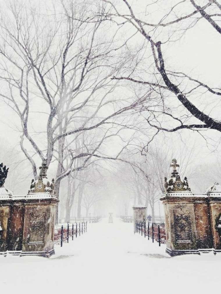 paisajes hermosos con-nieve