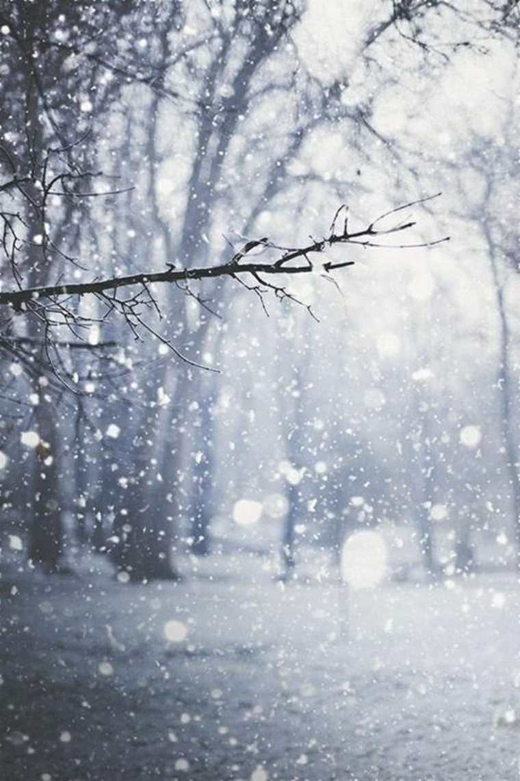 paisajes hermosos nevada
