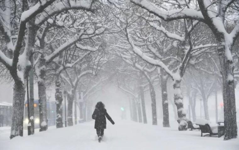 paseo-en-invierno