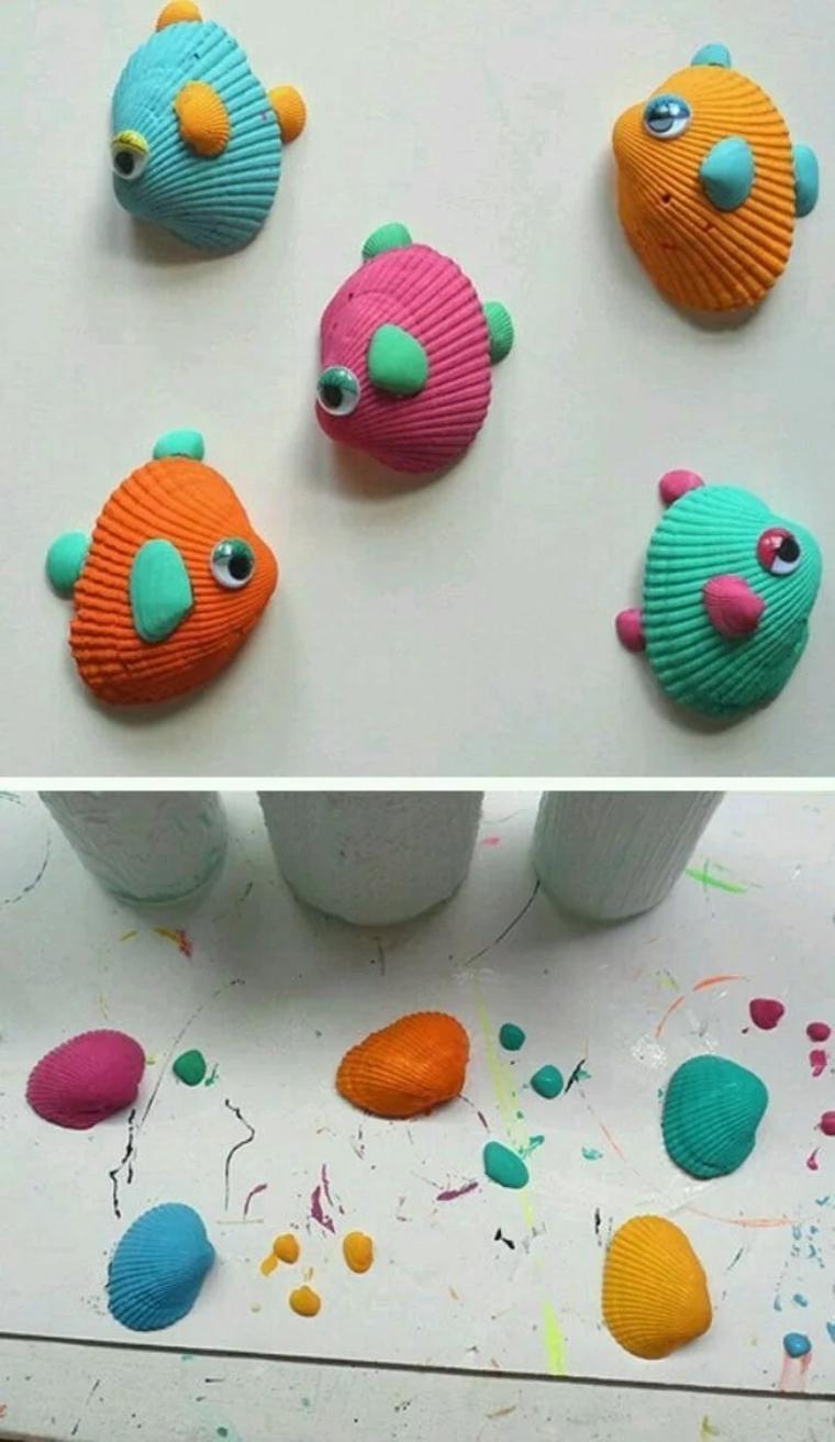 peces-de-conchas