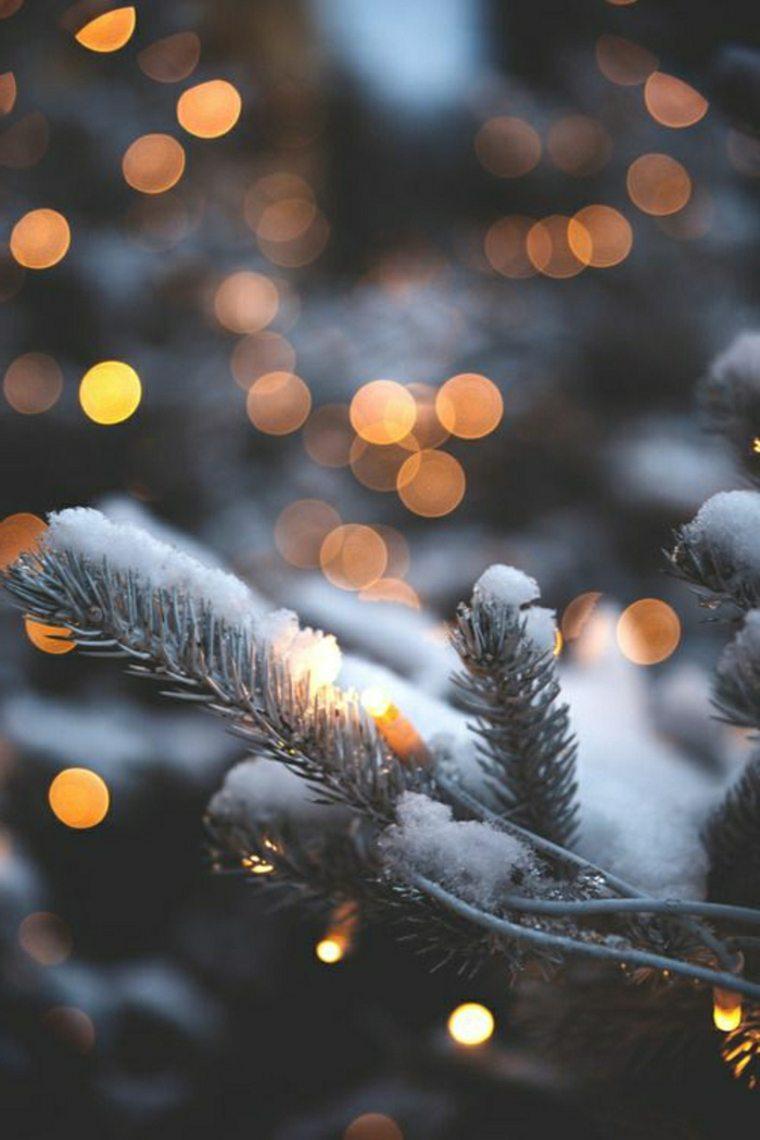 pino-con-nieve