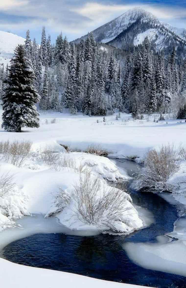 río-en-invierno