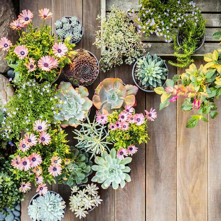 regalos-para-mama-ideas-flores