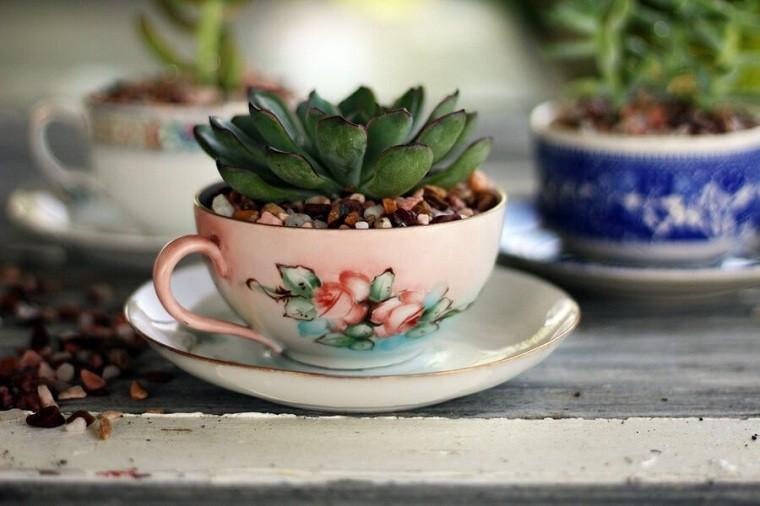 suculentas-plantas-decorar-tazas-cafe