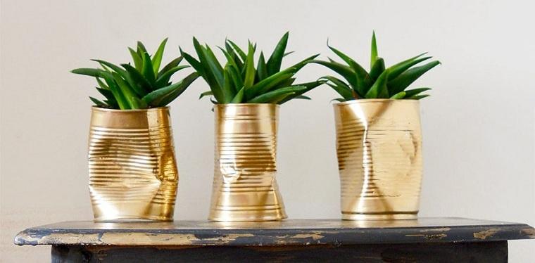 suculentas-plantas-latas-opciones-originales