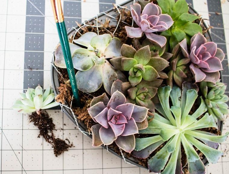 suculentas-plantas-maceta-forma-corazon-ideas-decorar-casa-estilo