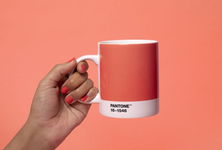 color pantone-ano-2019-tendencia-decorar