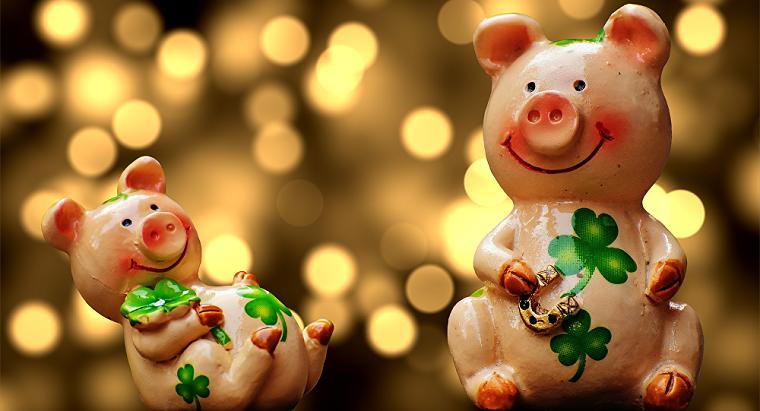 ano-nuevo-chino-2019-cerdo-tierra