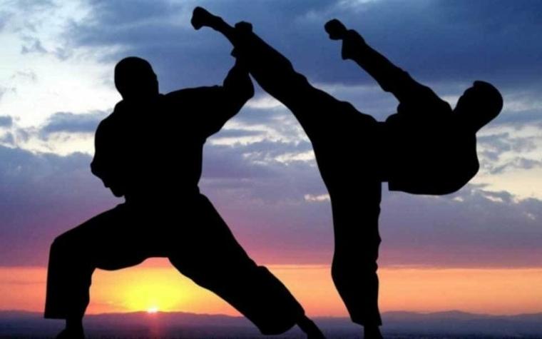artes marciales escena