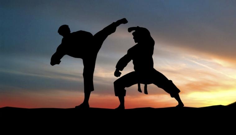 artes marciales kung fu