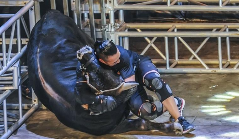 artes marciales lucha de toros