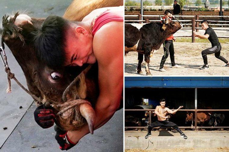 artes marciales y toros escenas